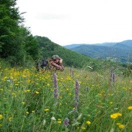 Jagdreise Bulgarien Profijagdreisen