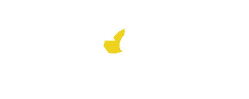Jagdreise-Jagdland-Kamerun-Afrika