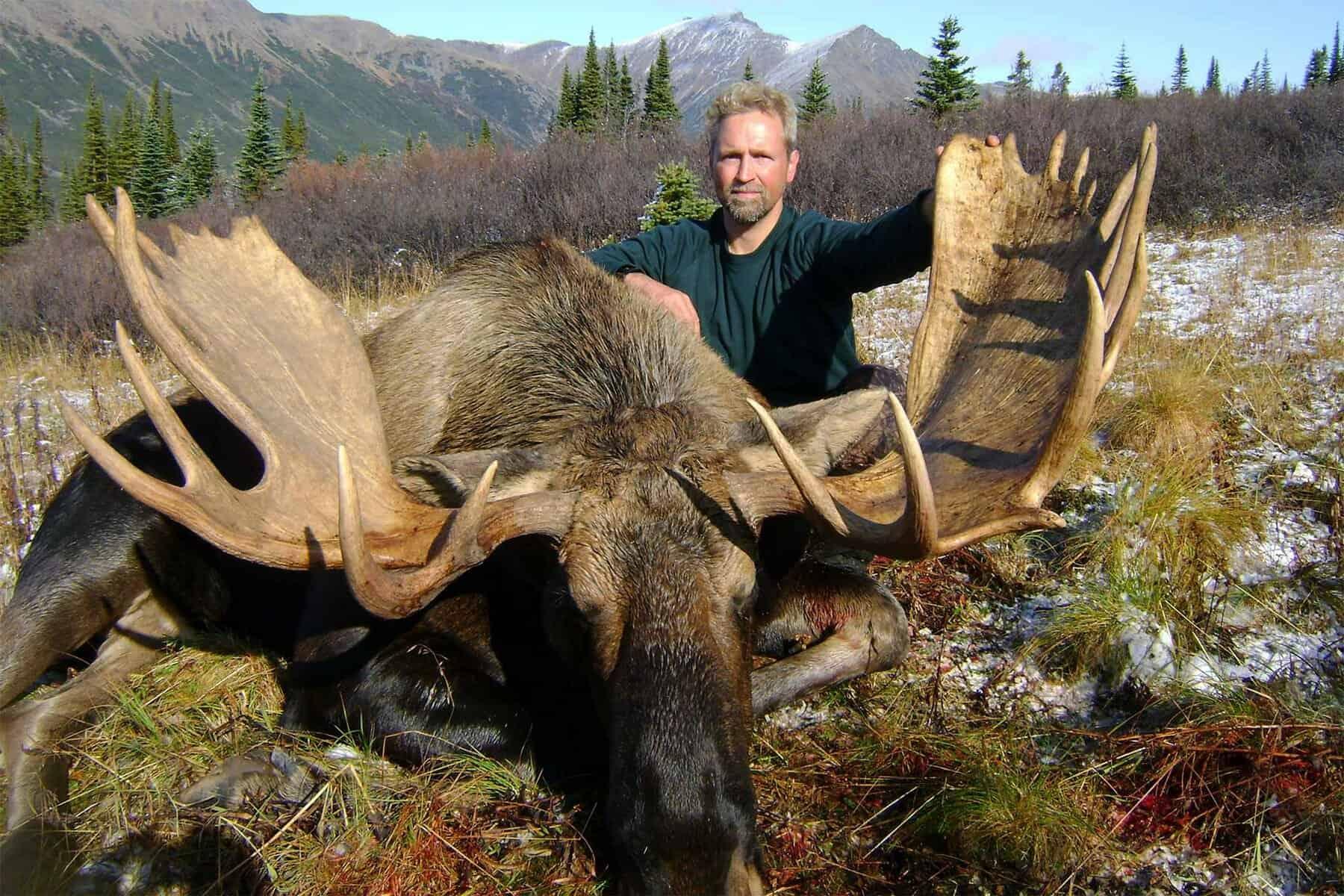 Wildtier-Elch-Jagdreise