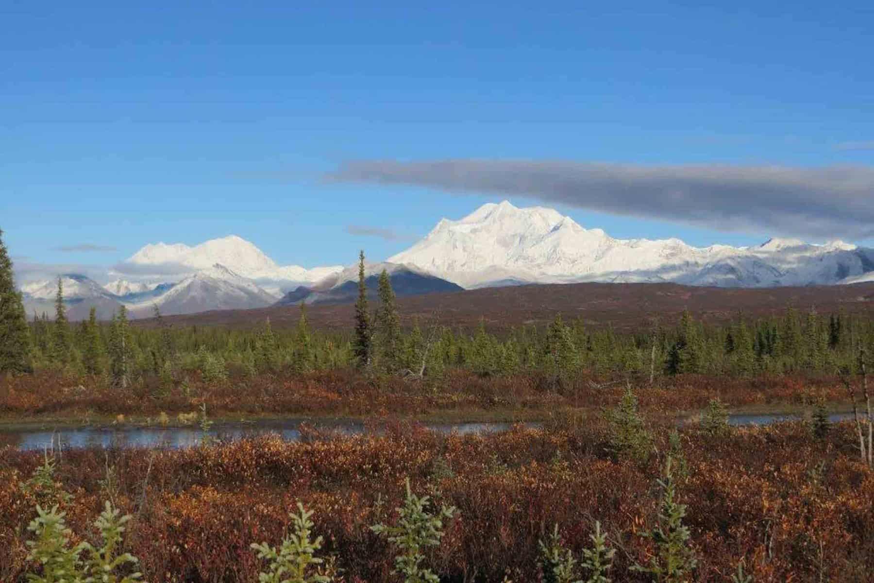 Jagdreise-Alaska