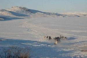 Jagdreise-Grönland
