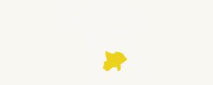 Jagdreise-Jagdland-Simbabwe-Afrika