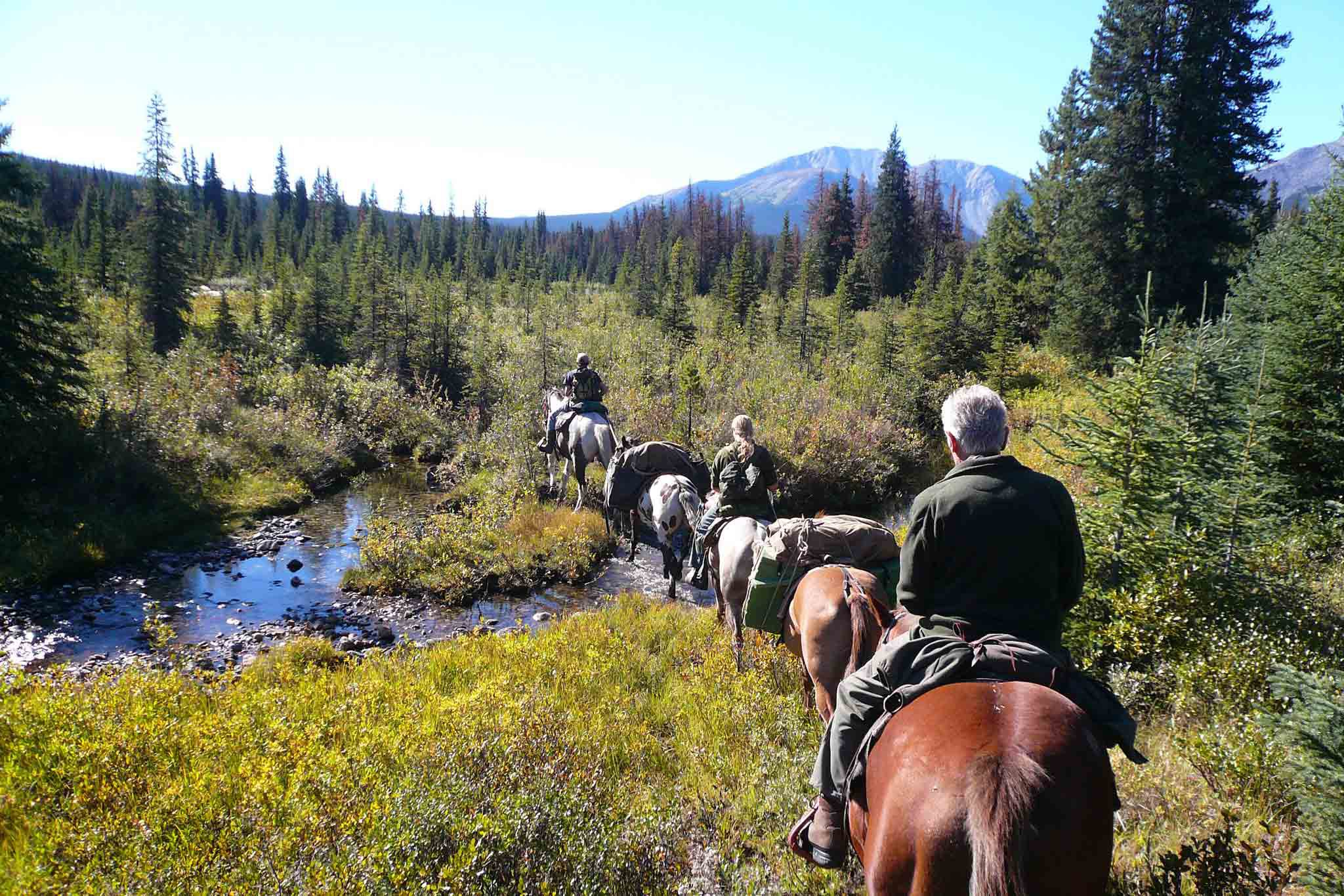Jagdreise-Kanada