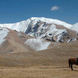 Jagdreise-Kasachstan