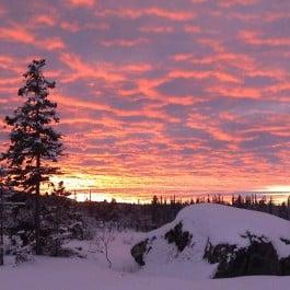 Jagdreise-Schweden