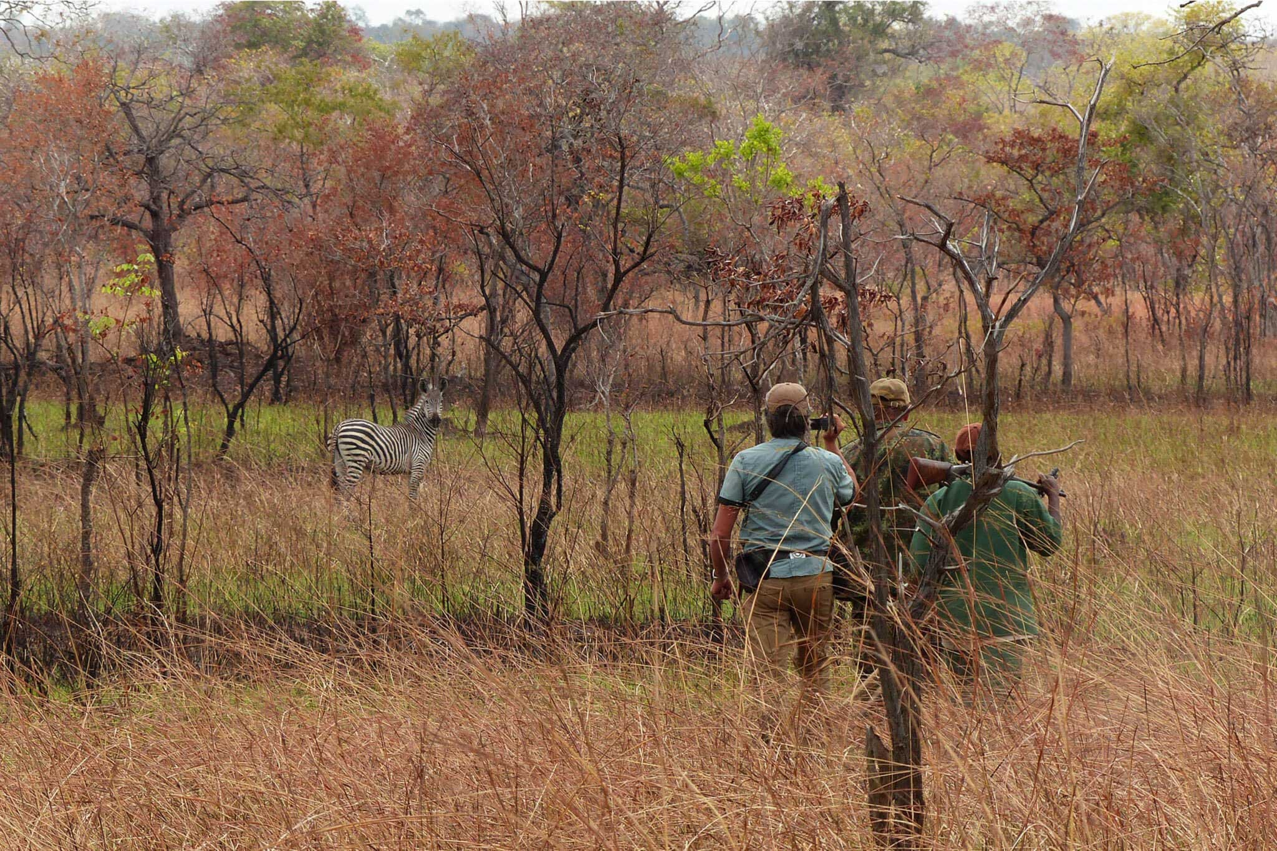 Jagdreise Tansania Profijagdreisen