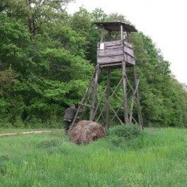 Jagdreise-Ungarn