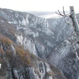 Serbien Mazedonien Jagdgebiet Jagdland