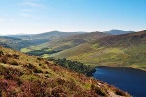 Irland Jagdgebiet Jagdland