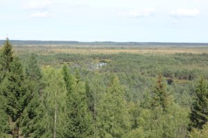 Landschaft Estland